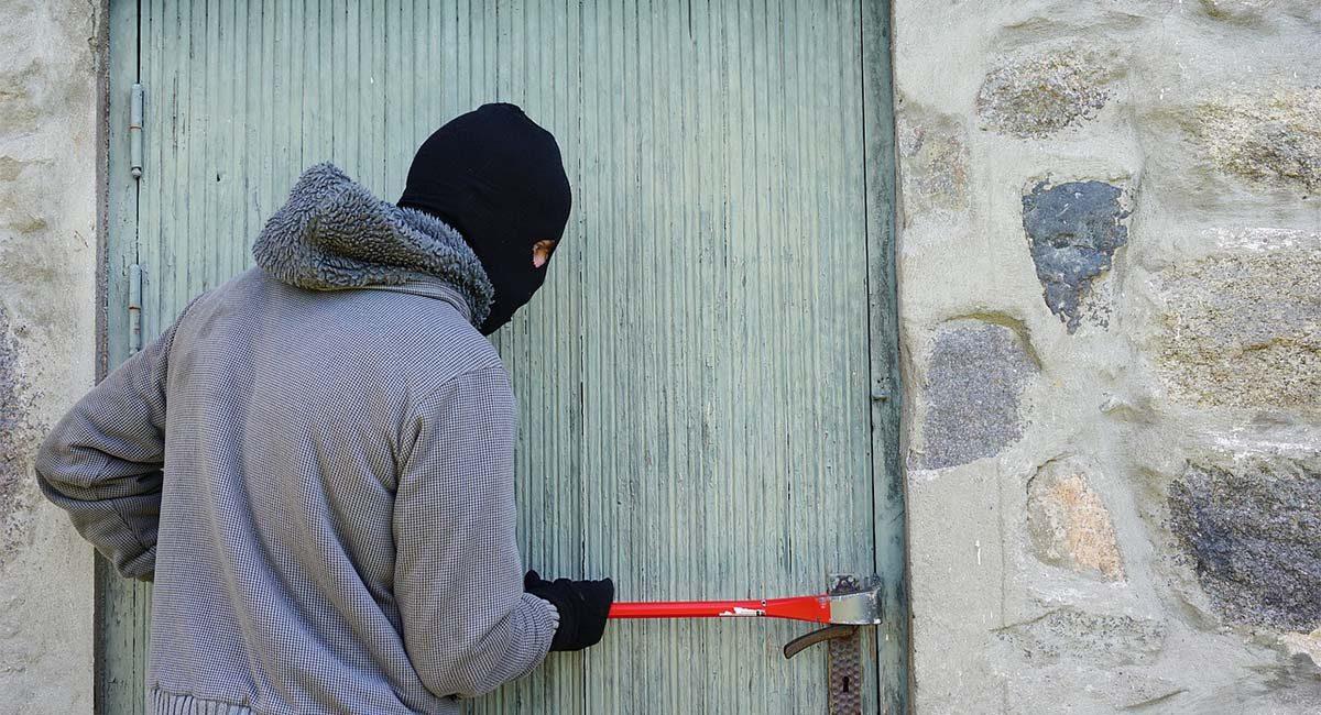 theft2